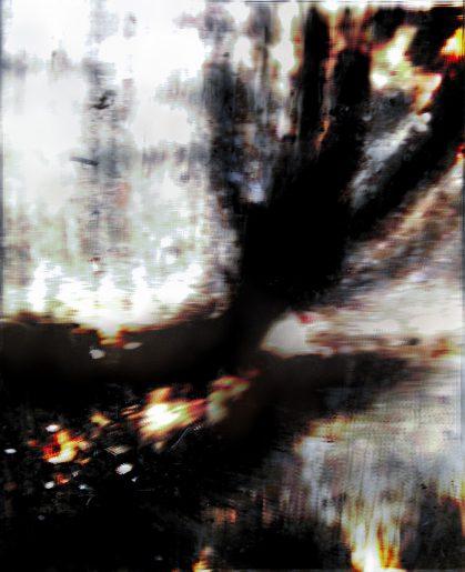 trees-17