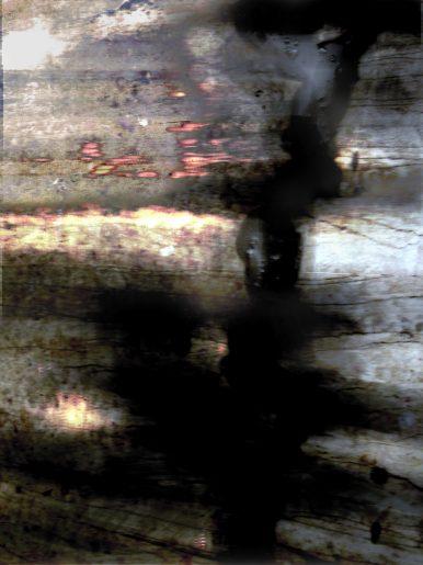 pathway-14-2008